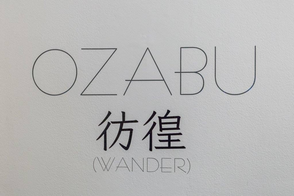opening-reception-ozabu-sommers-85