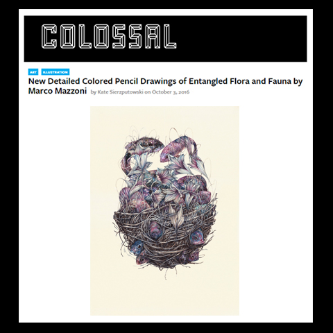 colossal-press